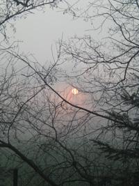 Sunrise (stockphoto by adzica, source sxc.hu)