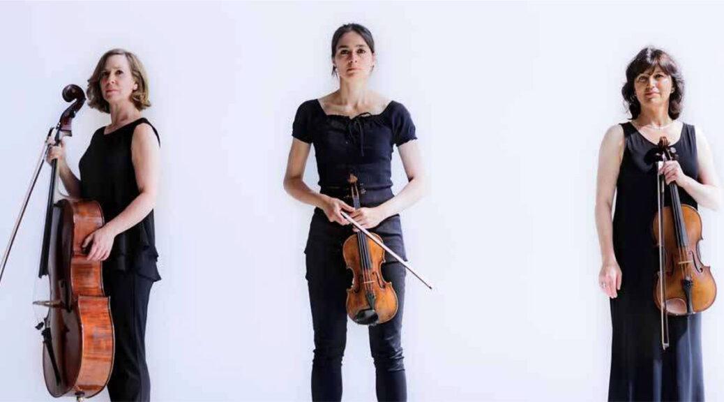 The Hague String trio (fragment van foto door Michel Marang)